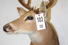 102-1