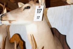 117-1