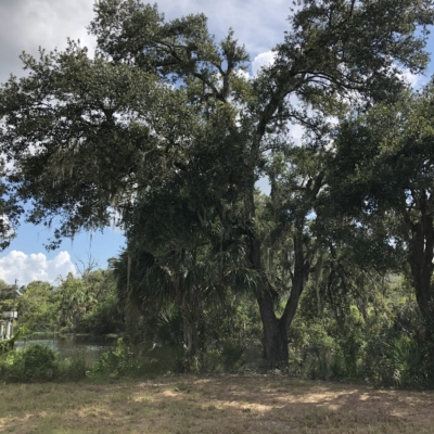 Lot #4 112 Foothill Rd.