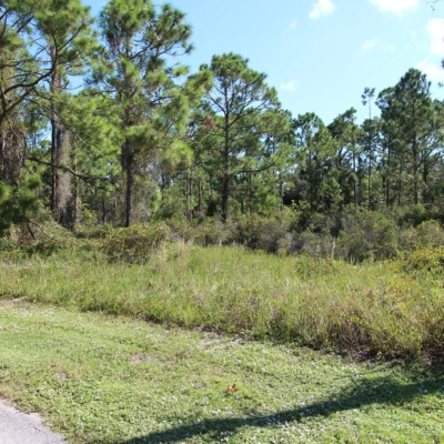 Lot #10 436 Kemper Ave.